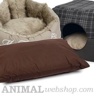 Liegekissen und Betten
